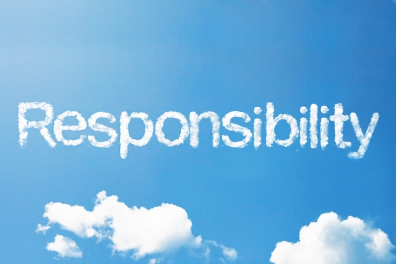my personal life responsibility I will give account of how i used my talents and abilities in fulfilling my personal responsibility in the church our individual responsibility in the church might.